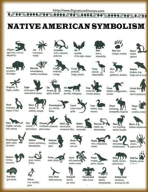animal tattoo meaning protection best 25 native american symbols ideas on pinterest