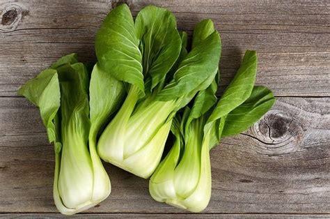 manfaat sawi hijau  kesehatan khasiat sehat