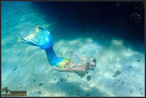 Selimut Mermaid Murah Gratis Nam mermaid mermaids fan 31406373 fanpop