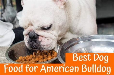best puppy food for bulldogs best food for american bulldog guide in 2017 us bones