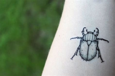 june bug tattoo best 25 beetle ideas on