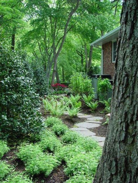 Woodlands Backyard backyard upgrades