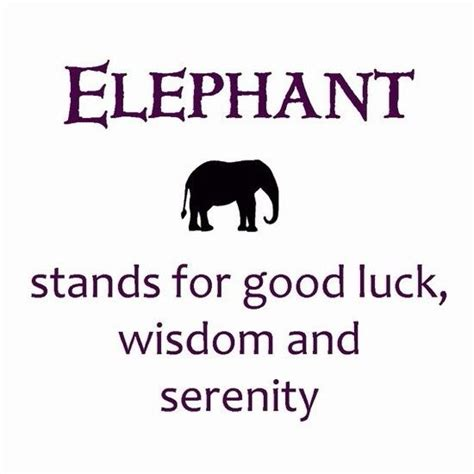 elephant tattoo meaning yahoo the 25 best elephant tattoo meaning ideas on pinterest