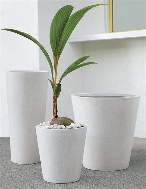 Cb2 Planters by Plants In The Nursery Project Nursery