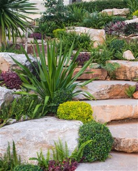 Plants To Use In Rock Gardens Lovetoknow Plants For A Rock Garden