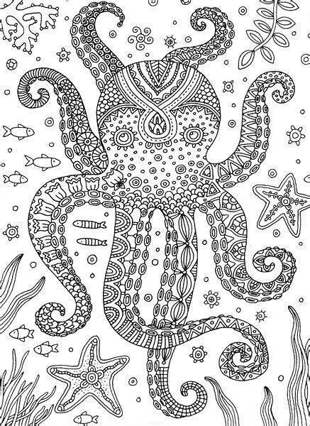 octopus coloring page adults octopus colorful meditations coloring book by stephanie