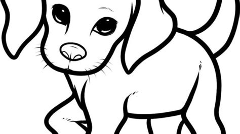 how to puppy puppies to draw drawings puppies drawings