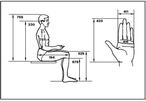 Typical Seating Height by Anthropometry And Biomechanics