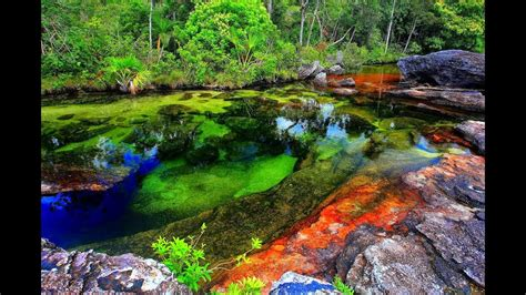 river colors the most beautiful river in the world spout