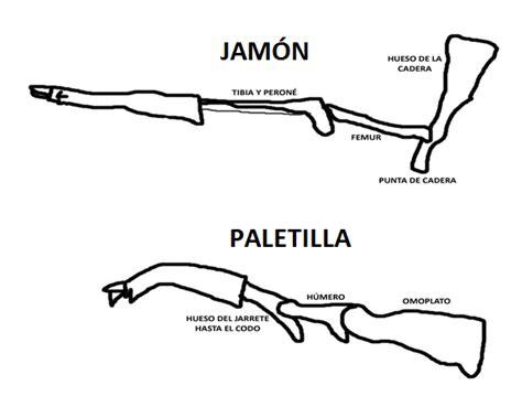 como cortar una paletilla de jamon diferencias entre jam 243 n y paletilla