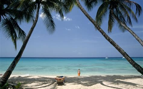 Top things to do on the west coast of Barbados