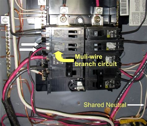 wired for multiwire branch circuits and