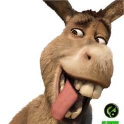 el gabinete siara apsara burro padece daltonismo