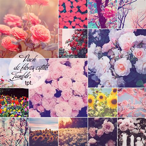 imagenes de amor con flores tumblr pack de flores estilo tumblr by closeyoureyesnow on deviantart