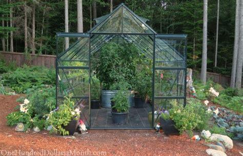 Greenhouse Vegetable Garden Mavis Butterfield Backyard Garden Plot Pictures Week