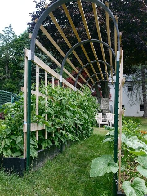 Garden Arch Netting Garden Trellis Ideas To Mesmerize Your Garden Look Home