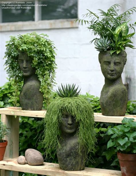 face planters home stonefacecreations homestead com