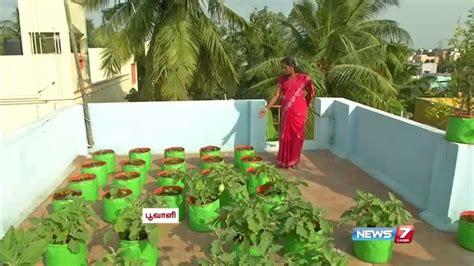 Growing Vegetables in Pots and in Garden   MYBKtouch.com
