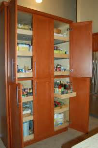 Storage Solutions For Kitchen Cabinets Kitchen Storage Solutions Construction Inc