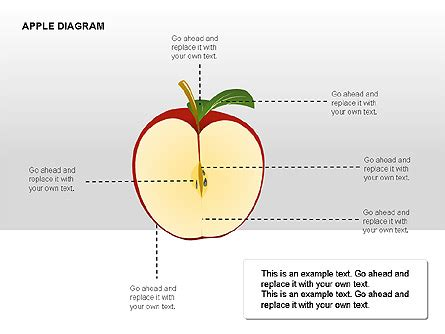 apple diagram apple diagrams collection for powerpoint presentations