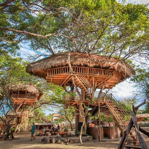 Sadru House Bali Indonesia Asia tree house nusa dua bali bali tree