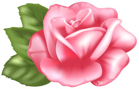 Rosa Clipart Petal Clipart Pink Pencil And In Color Petal