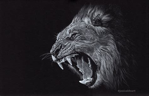 black paper drawings jessica lebo art
