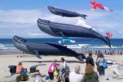 lincoln city kite festival lincoln city oregon 2014 summer kite festival gets unleashed