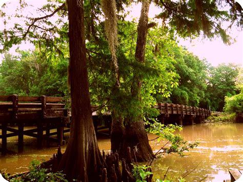 louisiana   louisiana   bourbon street bayou folk