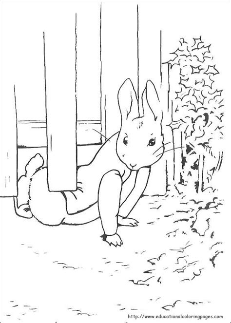 peter rabbit coloring coloring pages