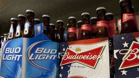 budweiser and bud light budweiser may seem watery but it tests at strength