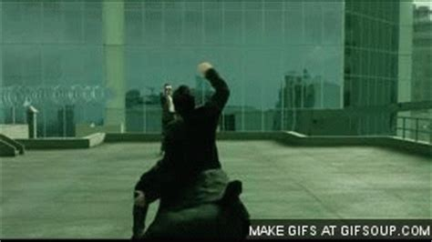 the matrix gif find & share on giphy