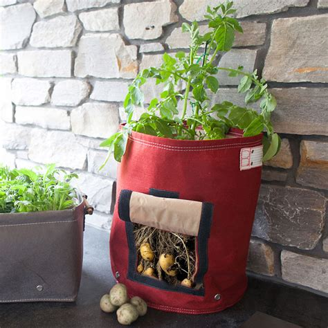 Vegetable Planterbag Large vegetable bag planters potato planter