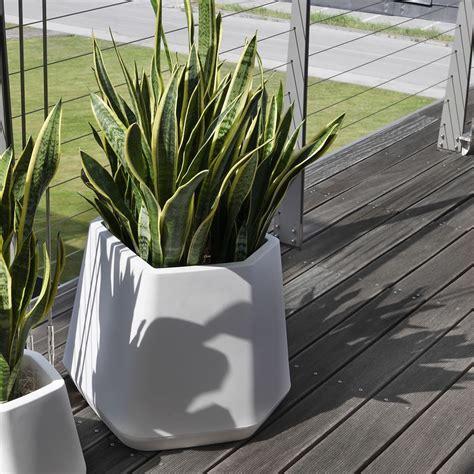 vaso per piante da esterno e interno ops m nicoli