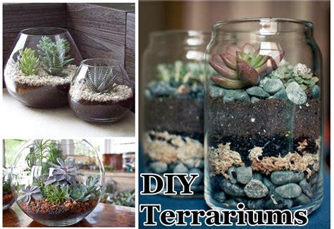 diy terrarium diy terrariums diy craft projects