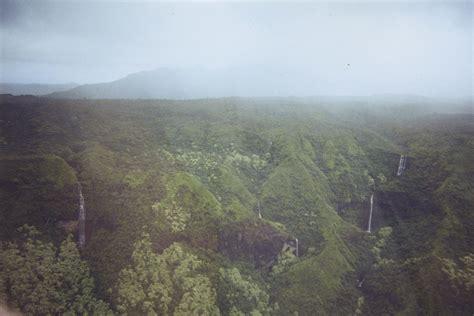 the garden island kauai san diego reader