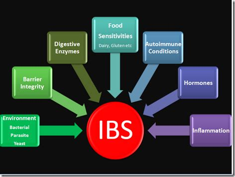 Ibs Stool by Ibs Symptoms Treatment Prevention Best Supplements For A Lasting Ibs Relief