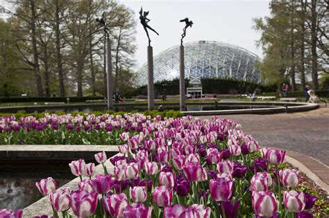 Garden Of Missouri Eight Spectacular Botanical Gardens That You Need To Visit