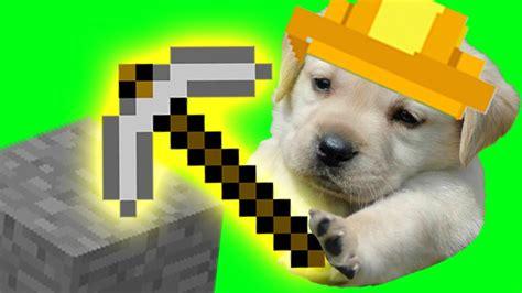 minecraft dog youtube