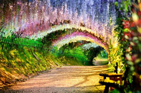 flower tunnel 10 unimaginable places on earth that actually exists