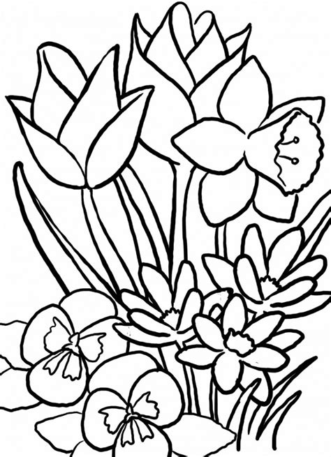 disegni da colorare fiori di primavera disegni di fiori da colorare e stare wellredpress