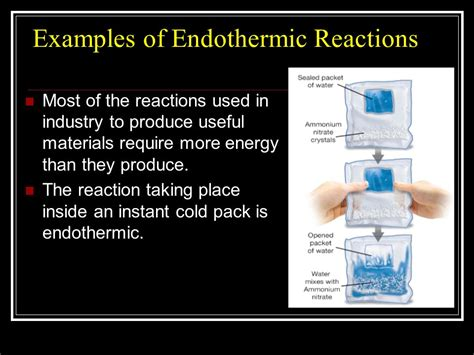 exle of endothermic reaction chemical reactions chapter 10 page 294 ppt