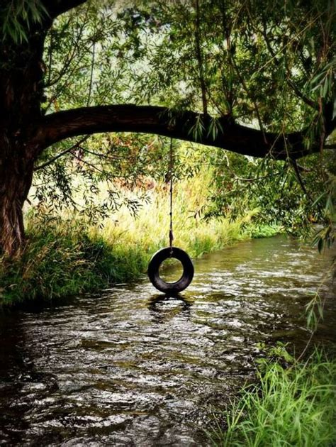 swing country 25 best ideas about tire swings on pinterest diy tire