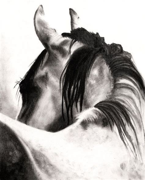 strumming pattern white horse draw pattern the look charcoal drawing of a horse