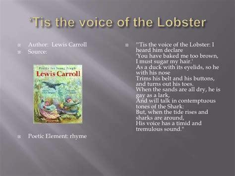 the voice lobster hair the voice lobster hair pauline fitterer presentation