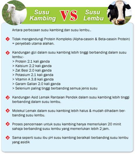 Obat Herbal Alami Kambing Bubuk Gomars Original Asli Termurah kambing vs sapi vs asi grosir kambing