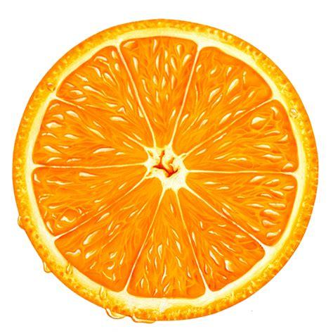 Splat Jeruk by Orange Slices Clip 40