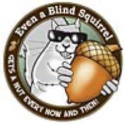 every blind squirrel finds a nut blind squirrel trading strategies