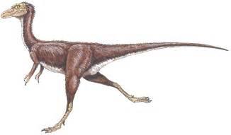 Compsognathus longipes compsognathidae dinosaur