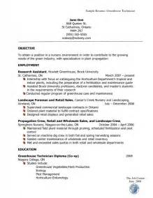 how does a resume supposed to look sles of resumes